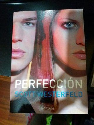 libro Perfecion