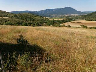 10 hectareas de labor Araguas del solano