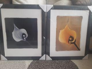 2 cuadros de 47×57.