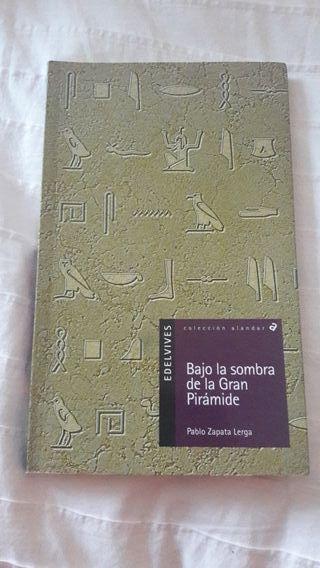 Libro Bajo la sombra de la Gran Pirámide
