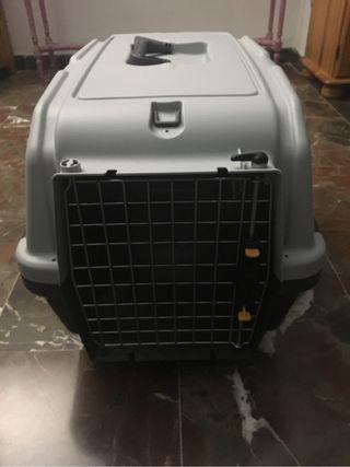 Caja de transporte animales