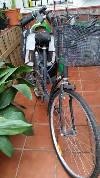Bicicleta 29 de paseo Mujer 140..e