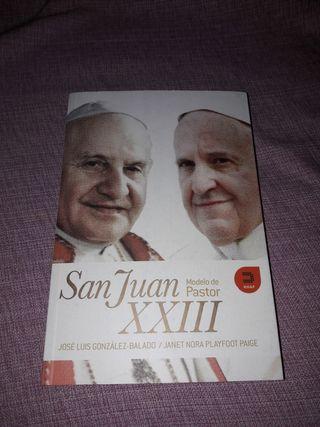 San Juan XXXIII. Modelo de Pastor