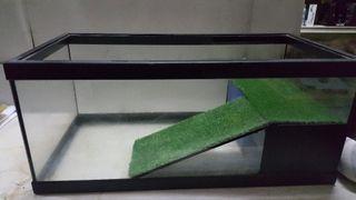 tortuguera de cristal