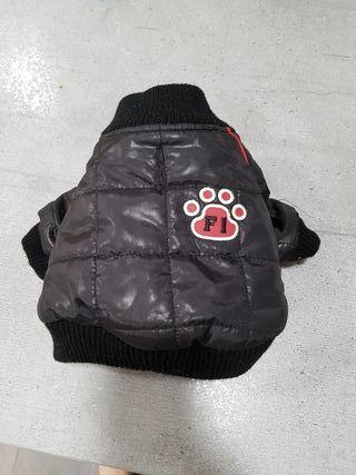 Lote abrigos perro