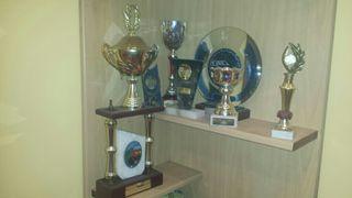 trofeos y estanteria