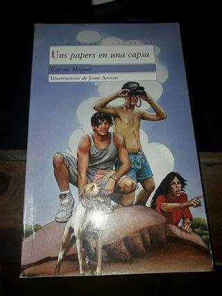 Libro Instituto PAPERS EN UNA CAPSA