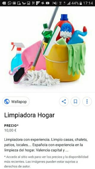 Cuidadora, limpiadora