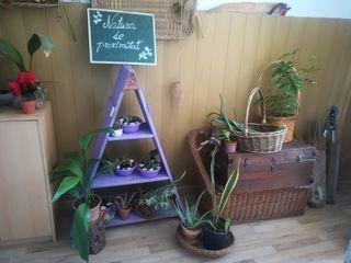 Huertos y jardines ecologicos