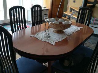 mesa de comedor y seis sillas