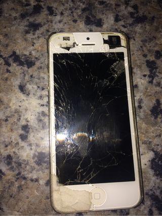 iPhone 5 iPhone 5s