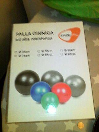 pelota para ejercicios