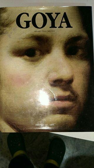 Libro de Goya