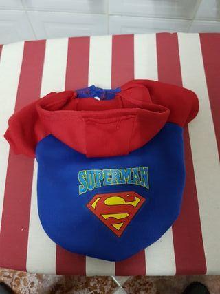 Sudadera de Superman para perro pequeño