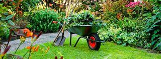 hago todo tipo de limpieza abonado etc en jardines