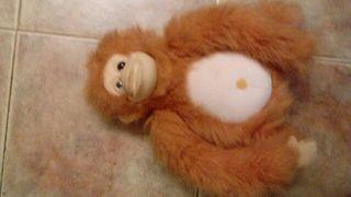 peluche orangutan