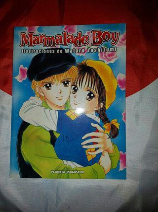 Marmalade Boy: Libro de ilustraciones(Artbook)
