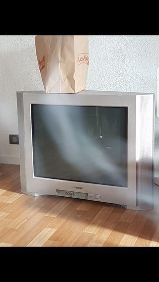 Televisión cato