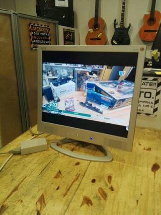Monitor ordenador
