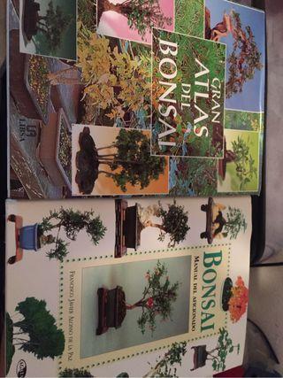 Libros bonsais