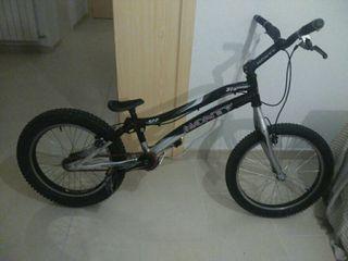 Monty Kamel 219