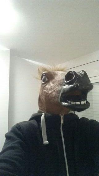 Máscara disfraz caballo