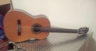 Vendo o cambio Guitarra mario vio