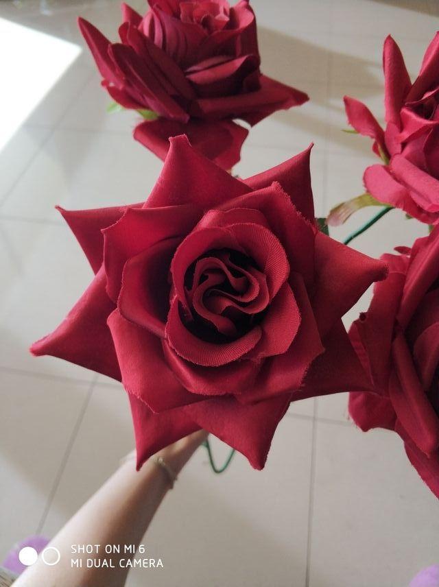 rosas rojas grandes impresionantes - Fotos De Rosas Rojas Grandes