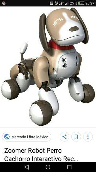 zoomer beagle