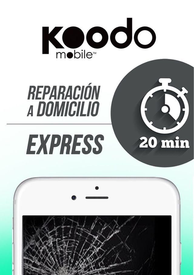 Express Repair