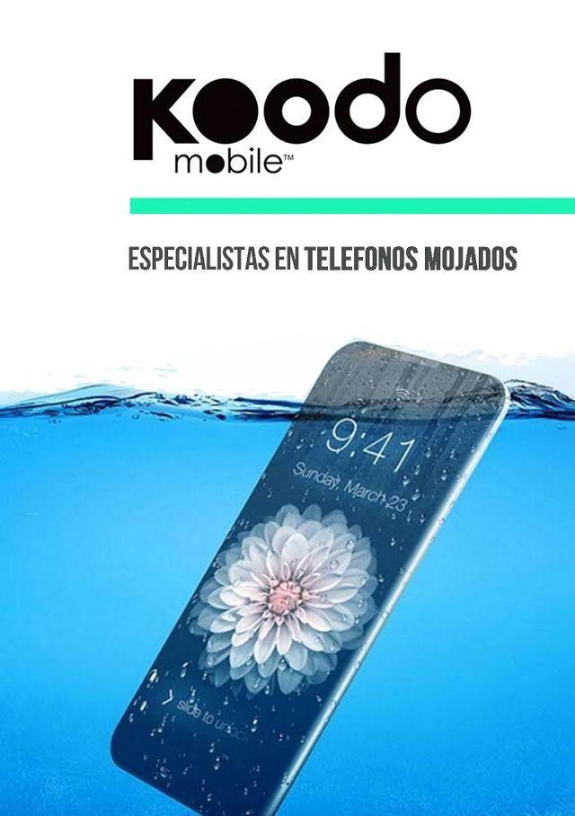 Reparar Teléfono Mojado