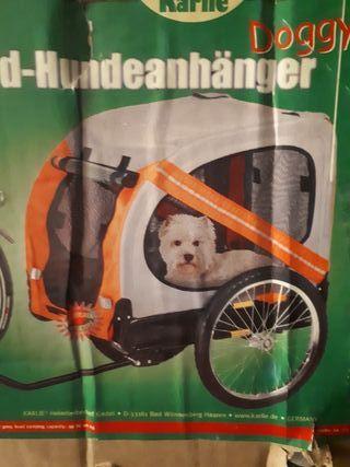 Carro Mascotas