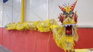 Disfraz. Dragon chino