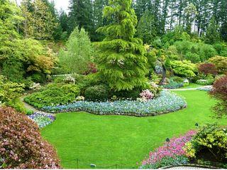 se realizan todo tipo de trabajos de jardineria