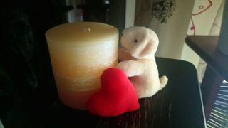 Vela y perrito corazón. San Valentín