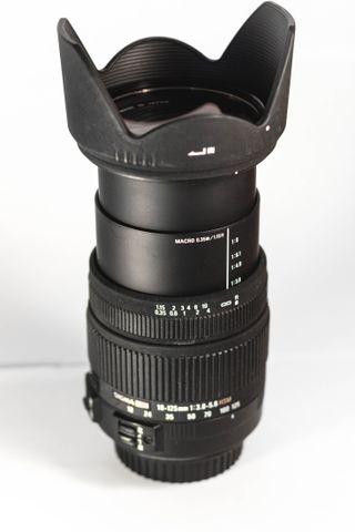 SIGMA 18-125 (Canon)