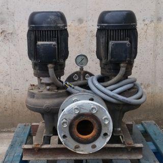 Bomba agua GRUNDFOS 2 motores