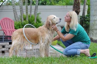 Aro de ducha para mascotas