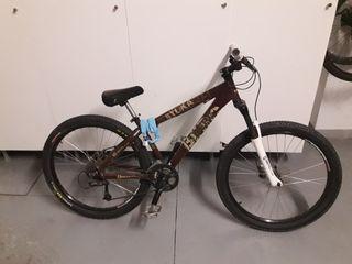 Bicicleta montaña descenso