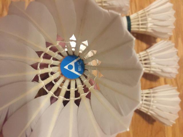 Badminton volantes pluma