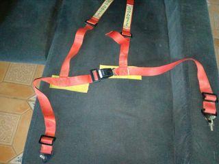 cinturon arnes rallye sabelt