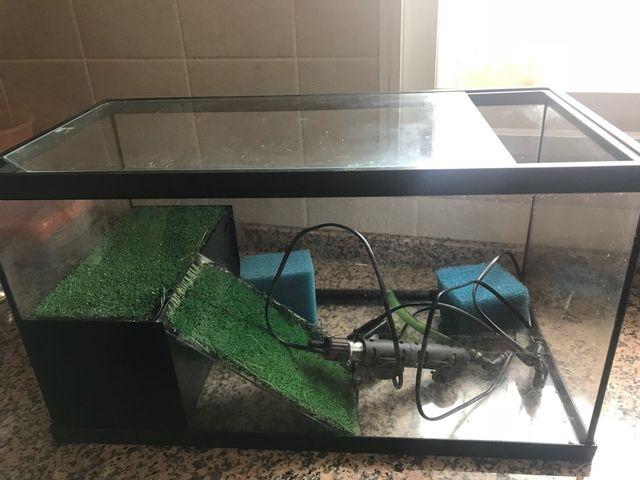 Acuario para tortugas de segunda mano por 50 en sanet y for Acuario tortugas