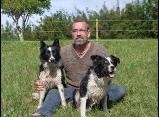 Entrenador de Perro