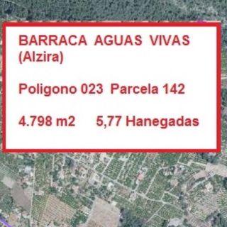 Terreno 5,8 Hanegadas Barraca