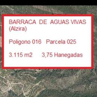 Terreno 3,75 Hanegadas Barraca