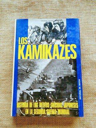 Los Kamikazes. Fernando Castro