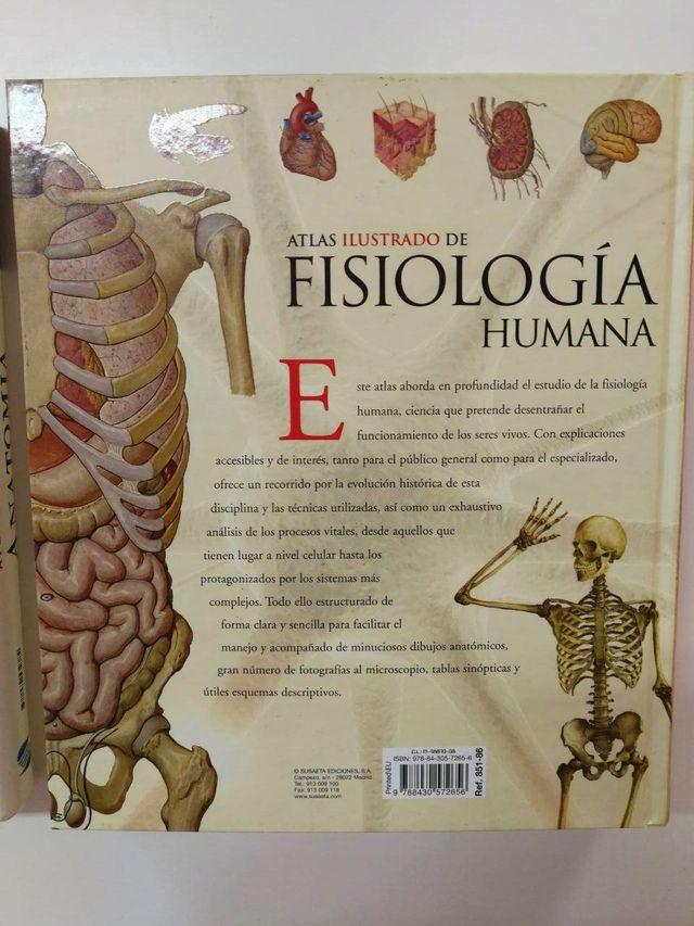 Moderno Anatomía Y Fisiología Humana Marieb Libro De Texto Colección ...