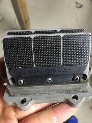 Vforce reed valve