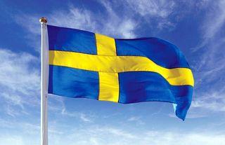clases de Sueco