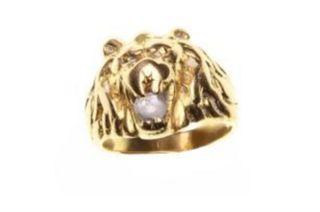 anillo de León